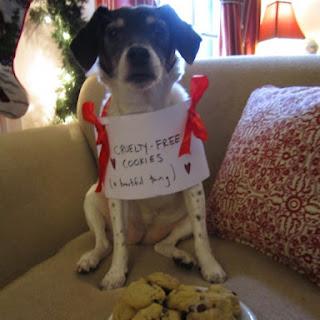 Kate's Cruelty Free Vegan Chocolate Chip Cookies