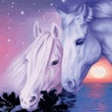 White Horses In Exotic Sunset logo