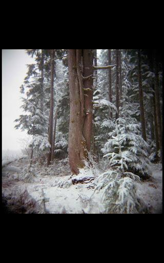 My HD Photos Snow Mountain LWP