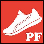 PlexFit for Pebble