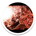 Photo HD Red Dragon LWP icon