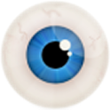 Focus Game icon