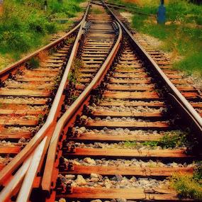 Behind (shadows) by Dalibor Davidovic - Digital Art Places ( railway, green, railroad, digital art )
