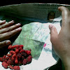 raspberry ?