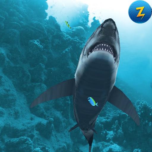 Diver vs Shark