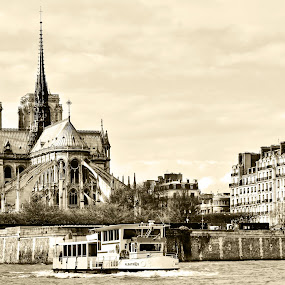 Notre Dame by Alin Gavriluta - Buildings & Architecture Public & Historical ( paris, church, notre dame, france, cityscape, boat,  )