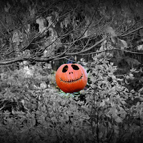 by Missy Grove Horne - Public Holidays Halloween ( selective color, pwc, , halloween, pumpkin, carved )