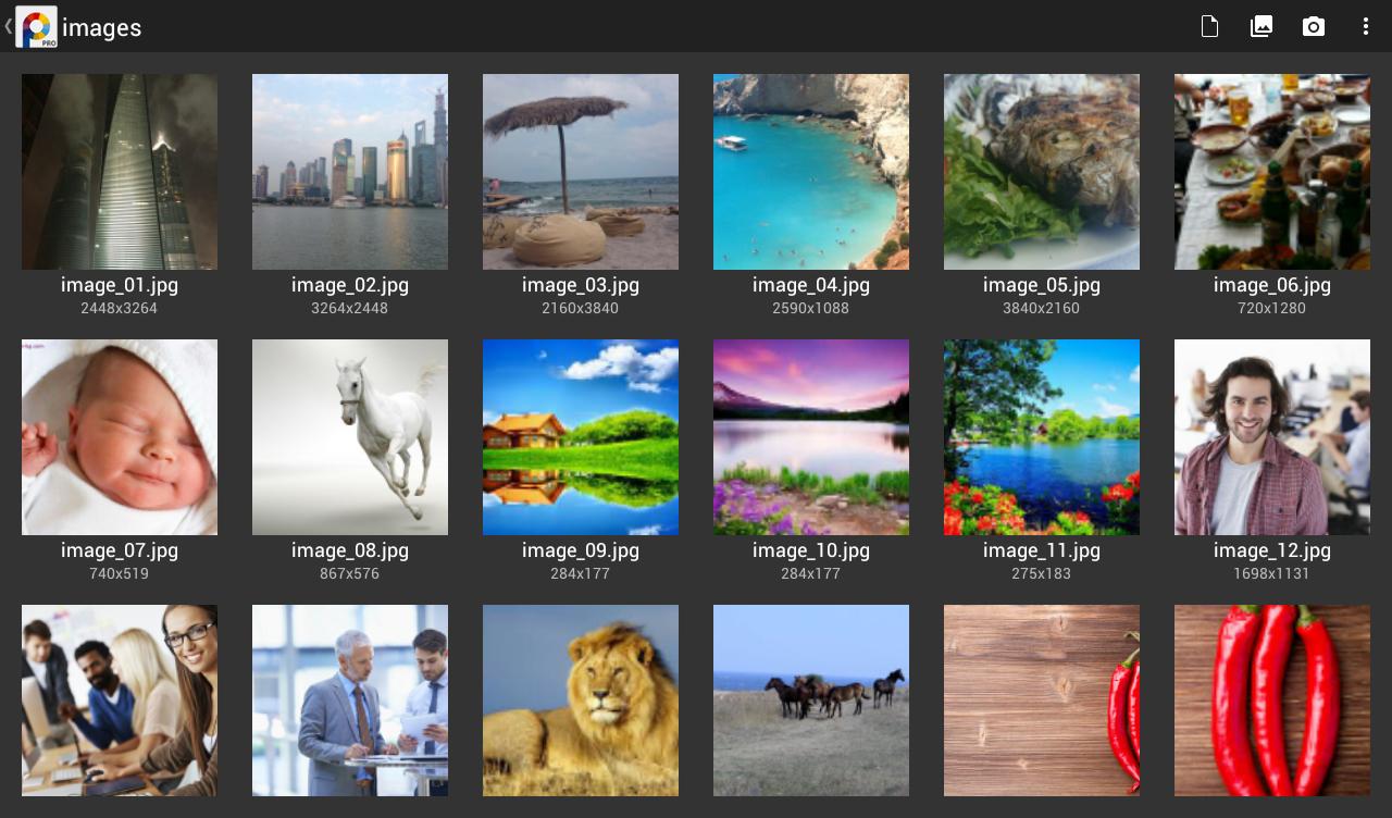PhotoSuite 4 Pro - screenshot