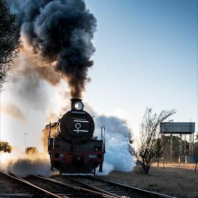 Early Morning Departure by Richard Ryan - Transportation Railway Tracks ( engine, railways, steam train, lines, smoke, steam,  )