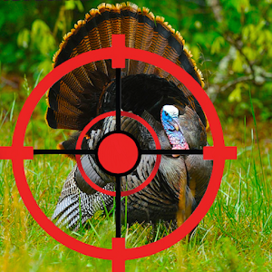 Turkey Hunter for PC and MAC