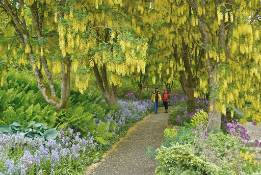 An Impressionist painting? Nope. A couple walks through VanDusen Botanical Garden in Vancouver, British Columbia.