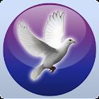 AM4Peace icon
