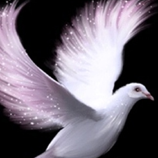Картинка анимация голуби летят, годик сыночку