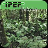 IPEF Notícias