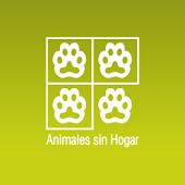 Animales Sin Hogar