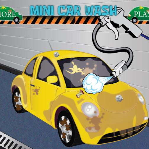 Mini car wash