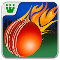 Power Cricket T20 logo