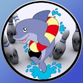 Dolphin bowling for kids
