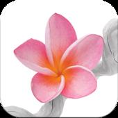 Flowers ITC