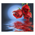 Rose In Water II logo
