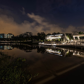 Reflections by Jane Chen - City,  Street & Park  Night