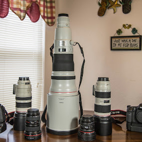 Camera Bodies and Lens'  by Steve Bales - Novices Only Objects & Still Life