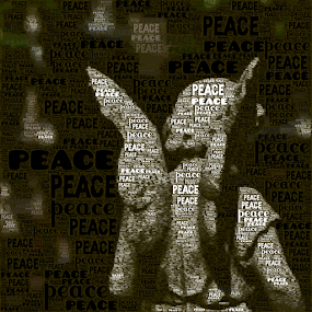 peace by Lennie L. - Typography Words (  )