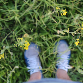 Faded by Spencer Ziemer - Flowers Flowers in the Wild ( potrait, photograohy, feet, flowers,  )