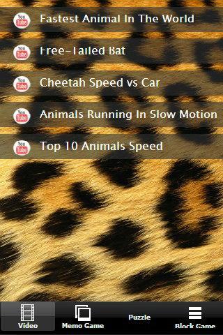 Turbo Racing Animal Game