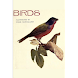 Birds  Illustrated by Color P