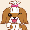 카톡 테마 강아지 시츄  (카카오톡 배경) icon