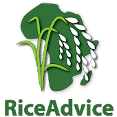 RiceAdvice Android APK Download Free By AfricaRice & Co-Capacity