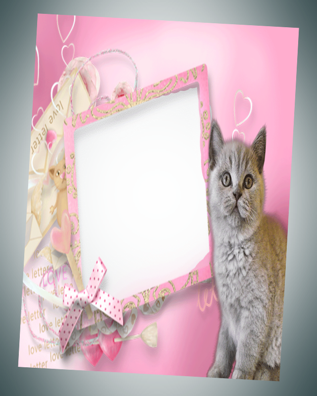 photo frames cat pic frames screenshot