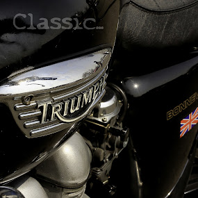 Classic ... by Charles KAVYS - Typography Captioned Photos ( motorcycles, triumph bonneville, triumph, classic,  )