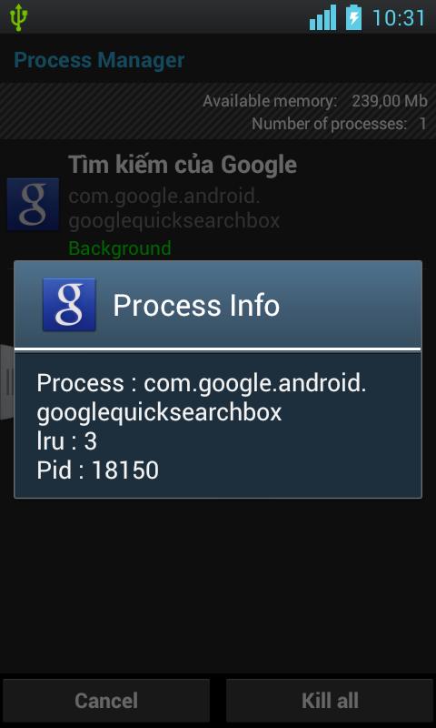 Clean Process, Manager Process - screenshot