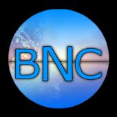 Balkanski portali (BNC)