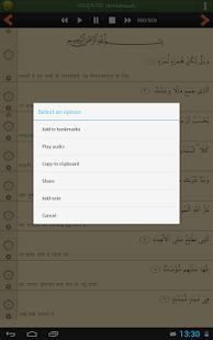Quran Hindi Pro (हिन्दी कुरान) screenshot