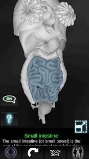 【免費醫療App】Organs 3D (Anatomy)-APP點子