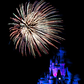 wishes by Brett Kurtz - City,  Street & Park  Amusement Parks ( wishes, walt, nola, by, disney, cinderella, photos, magic, kingdom, florida, fireworks, orlando, castle, world )
