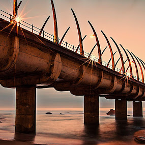 Bone Bridge by Marc Anderson - Landscapes Waterscapes ( umhlanga, durban, rocher photography, marc anderson,  )