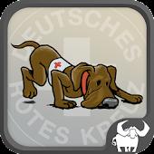 DRK Rettungshundeteam Prüfung