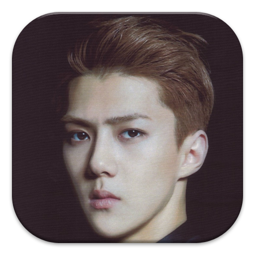 EXO Oh Sehun Puzzle Games