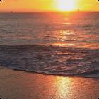 Sunset Beach Live Wallpaper HD icon