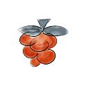 RemotePi icon