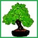 BonsaiDroid Pro icon