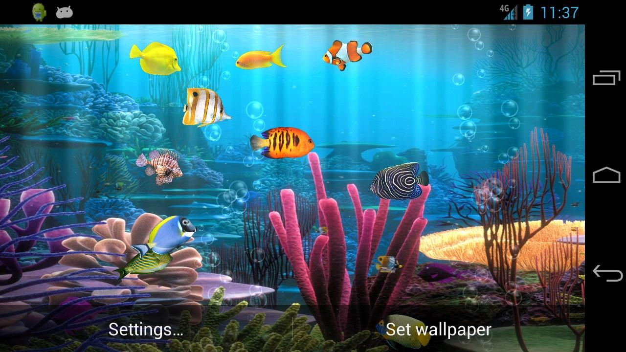 Fish aquarium live wallpaper - Fish Aquarium Free Screenshot