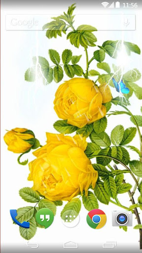 yellow flower live wallpaper