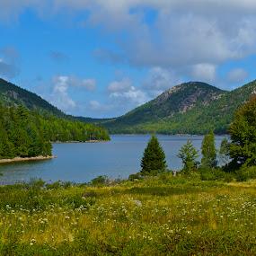 Acadia Tranquility by Roy Walter - Landscapes Travel ( nature, acadia national park, landscape, mountains & hills, lake jordan )