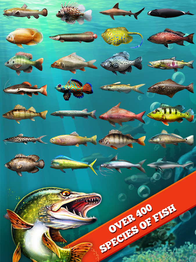 Let 39 s fish sport fishing game android apps on google play for Best fishing game android