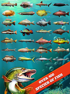 Let's Fish: Sport Fishing - screenshot thumbnail